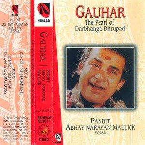 Image for 'Abhay Narayan Mallick'