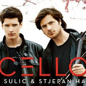Image for 'Luka Sulic & Stepjan Hauser'