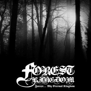 Image for 'Forest Kingdom'