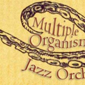 Image for 'Multiple Organism Jazz Orchestra'