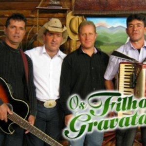 Image for 'OS FILHOS DE GRAVATAL'
