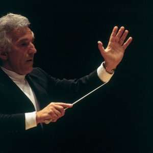 Image for 'St. Petersburg Philharmonic Orchestra & Vladimir Ashkenazy'