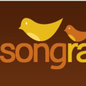 Image for 'Birdsong'
