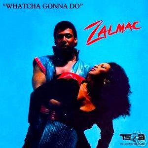 Image for 'Zalmac'