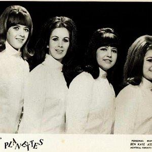 Image pour 'The Beatle-ettes'