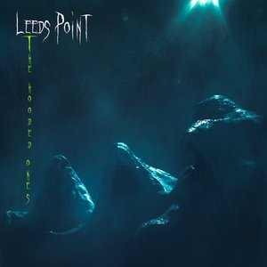 Image for 'Leeds Point'