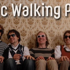 Image for 'Nordic Walking Punks'