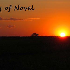 Image for 'History of Novel'