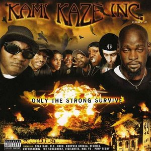 Image for 'Kami Kaze Inc.'