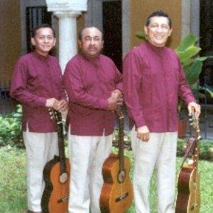 Image for 'Los Tres Yucatecos'