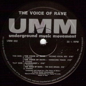 Image for 'the voice of rave'