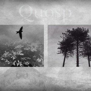 Bild für 'Quosp'