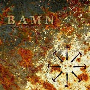 Image for 'BAMN'