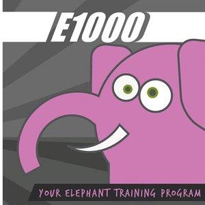 Image for 'E1000'
