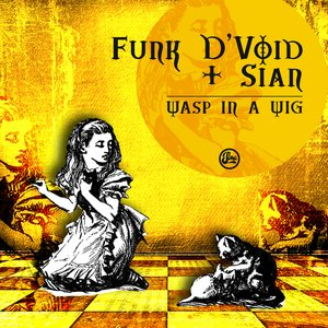 Image for 'Funk D'void & Sian'