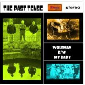 Image for 'The Past Tense'