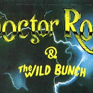 Image for 'Doctor Rock And The Wild Bunch'