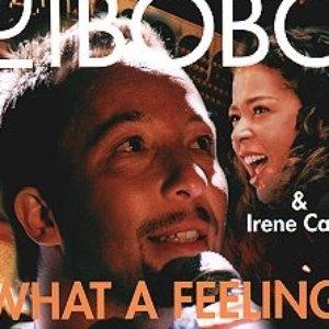 Image for 'DJ Bobo & Irene Cara'