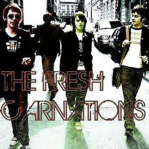 Image for 'The Fresh Carnations'
