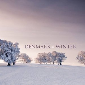 Image for 'Denmark + winter'