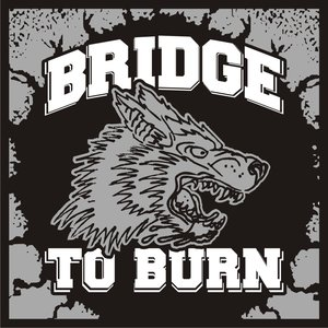 Image for 'Bridge To Burn'