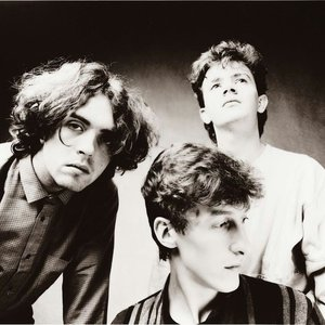 Imagem de 'The Icicle Works'