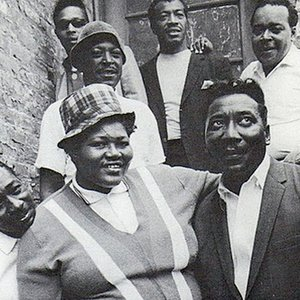 Image for 'Big Mama Thornton with the Muddy Waters Blues Band'