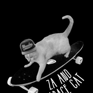 Image for 'za and garage cat'