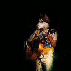 Image pour 'Le Husky'