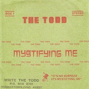 Image for 'The Todd'
