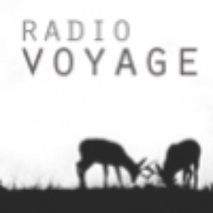 Image for 'RADIO VOYAGE'