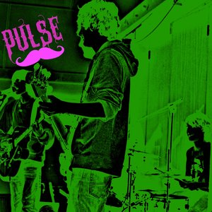 Image for 'pulse the band'