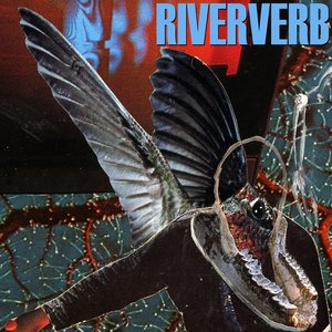 Image for 'Riververb'