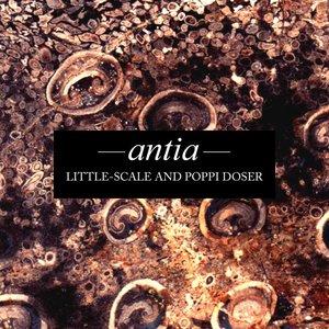 Immagine per 'Little-Scale And Poppi Doser'