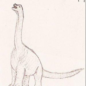 Image for 'Sauropodamorpha'