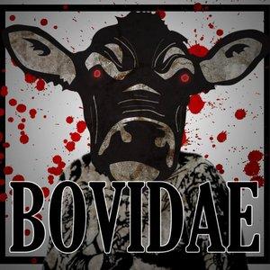 Image for 'Bovidae'