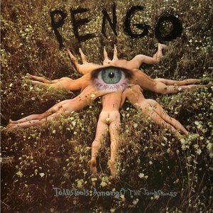 Image for 'Pengo'