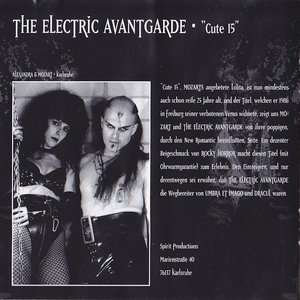 Image for 'The electric avantgarde'