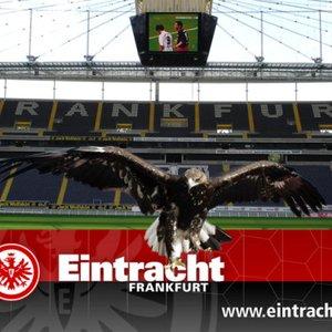 Image for 'Eintracht Frankfurt'