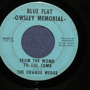 Image for 'The Orange Wedge'