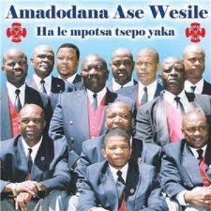 Image for 'Amadodana Ase Wesile'