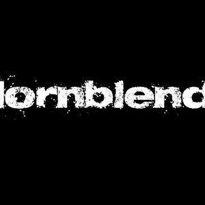 Bild för 'Hornblend'