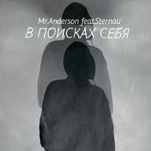 Image for 'Mr.Anderson feat.Sternau'