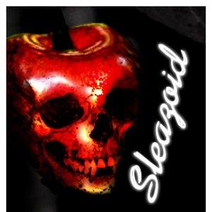 Image for 'Sleazoid'