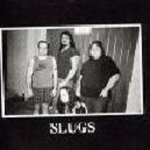 Image for 'The Slugs'