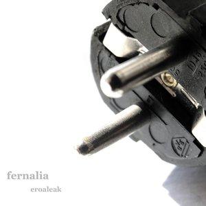 Image for 'Fernalia'