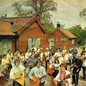 Image for 'Södra Bergens Balalaikor'