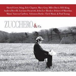 Image pour 'Zucchero & John Lee Hooker'