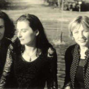 Image for 'Ensemble peregrina'