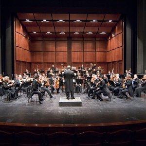 Bild für 'Munich Symphony Orchestra'